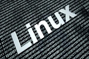 TheMerkle_Linux Vulnerability