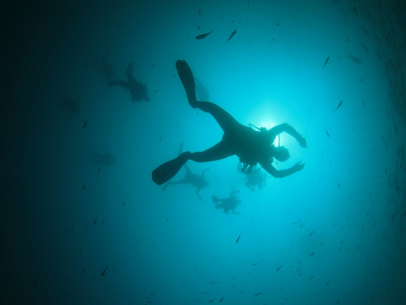 TheMerkle_Scuba Diving