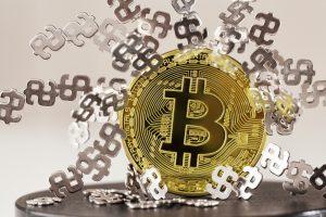 TheMerkle_Bitcoin Popularity