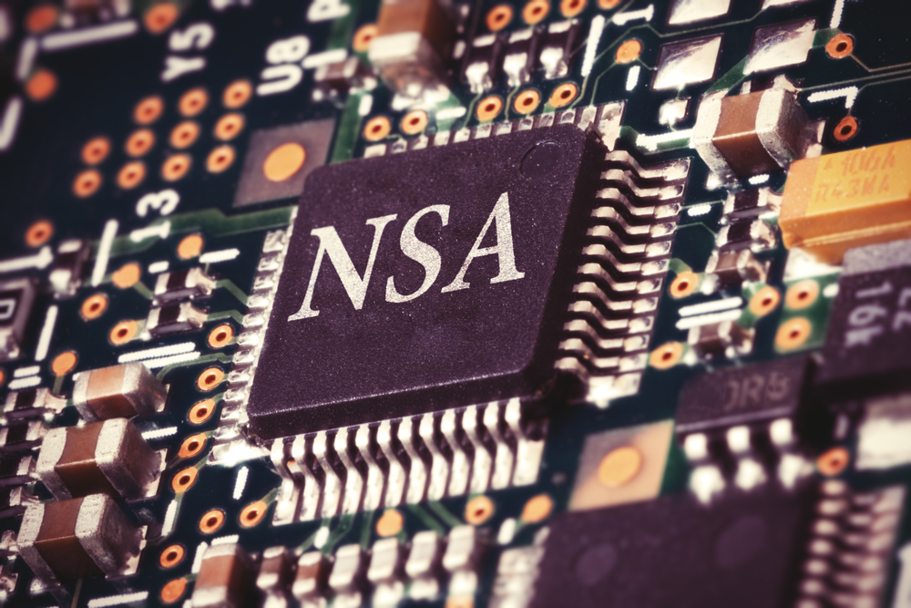 TheMerkle_NSA Privacy Extremist