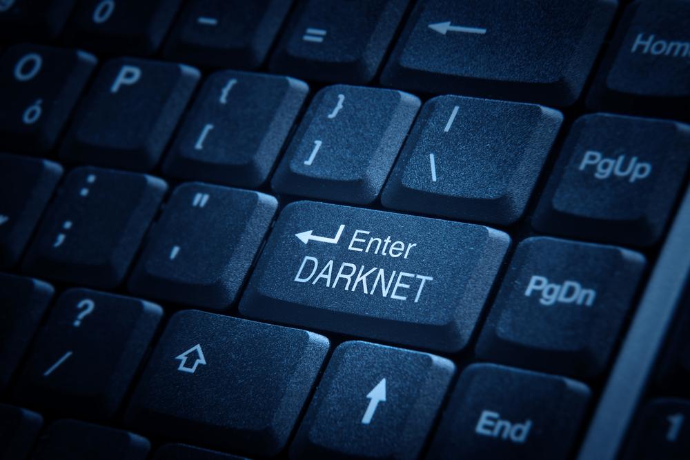 TheMerkle_Dark Net Data Breach