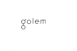 TheMerkle_Golem Network Ethereum