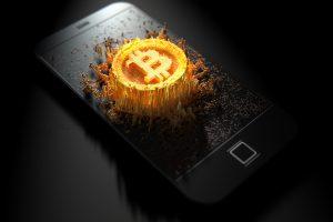 beginner bitcoin wallets