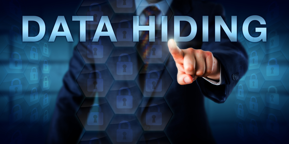 TheMerkle_Data Hiding Magento