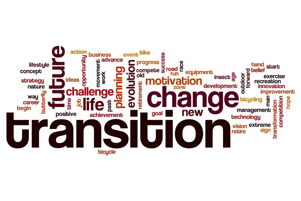 TheMerkle_Brexit Transitional Deal