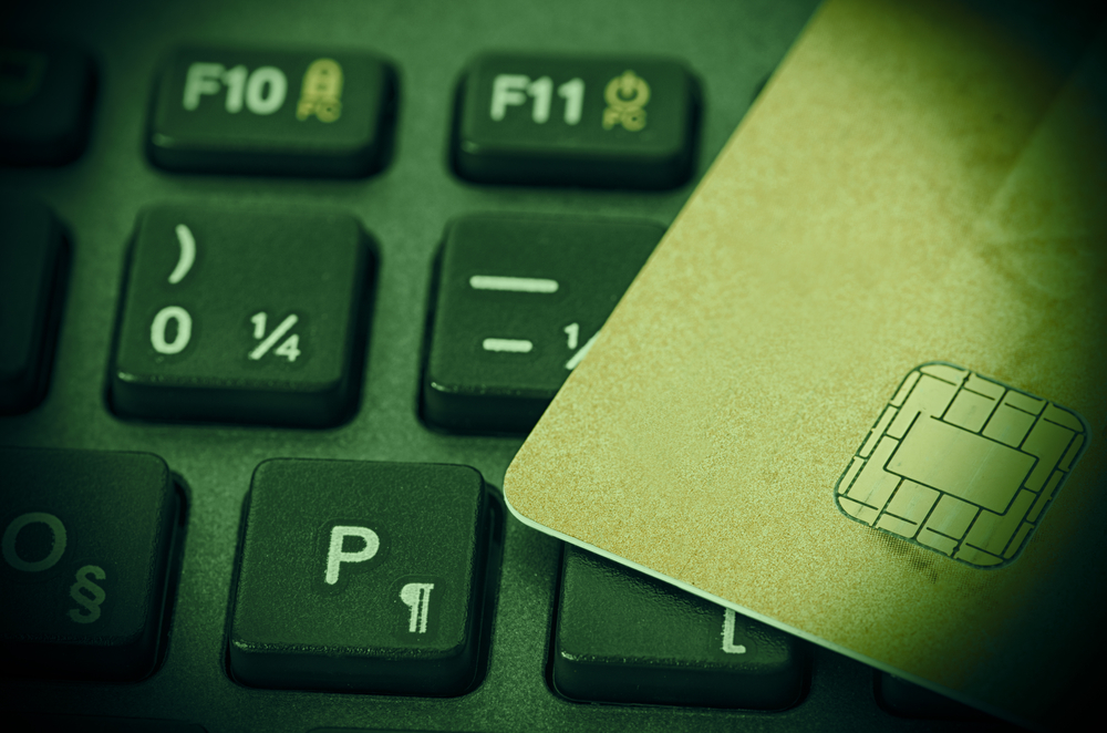 TheMekrle_Guessing Visa Payment Card Information