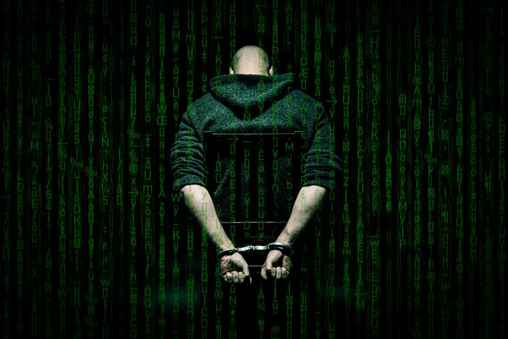 TheMerle_Top Hacker Arrests
