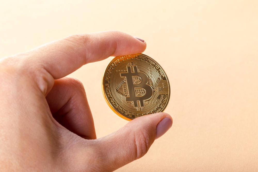 TheMerkle_Dutch Pirate Party Bitcoin