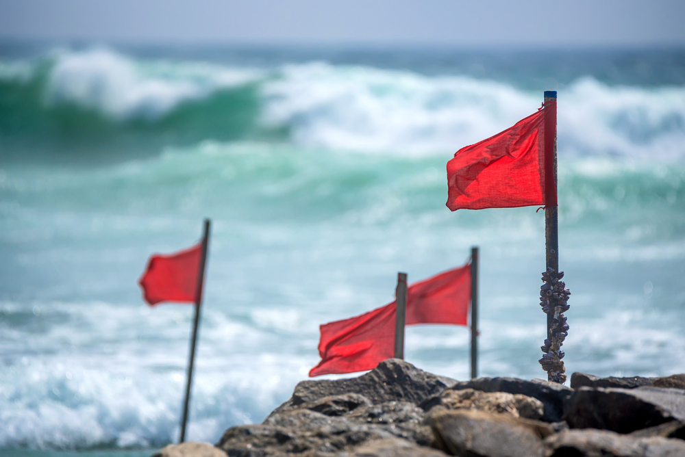 TheMerkle_OneCoin Red Flags