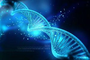 TheMerkle DNA Data Storage