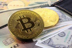 TheMerkle Safe Bitcoin Wallets