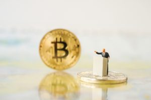 TheMerkle Alternative Bitcoin Full Node