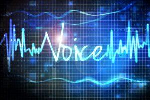 TheMerkle Voice Authentication HSBC