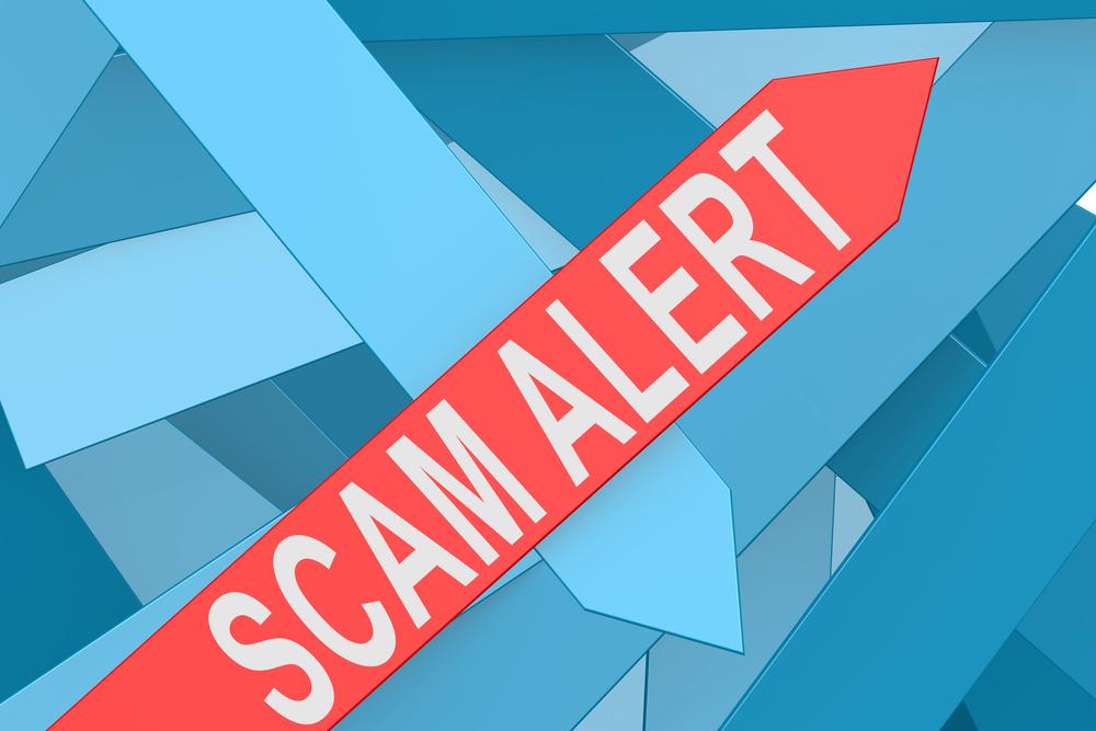 TheMerkle Sennator Bitcoin Scam