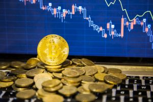 TheMerkle Bitcoin Dominance Index