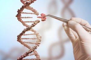 TheMerkle Gene Editing HIV
