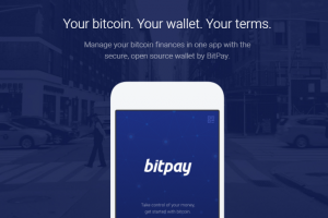 bitpay wallet review