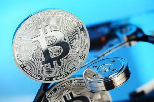 TheMerkle Adult Content Bitcoin