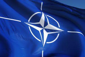 TheMerkle NATO AI