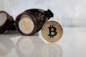 TheMerkle Bitcoin Google Trends Languages