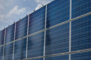 TheMerkle Trump Wall Solar Panels