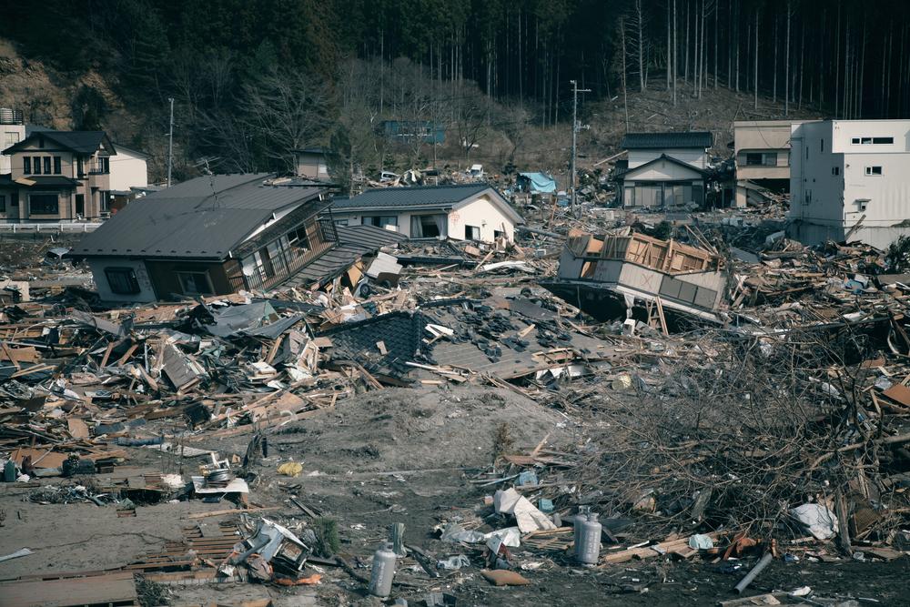 TheMerkle Cheetah 3 MIT Disaster Area