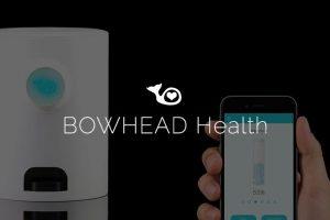 bowheadhealth logo