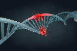 TheMerkle Biological Malware DNA