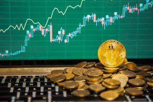 TheMerkle Bitcoin Cash Price 500