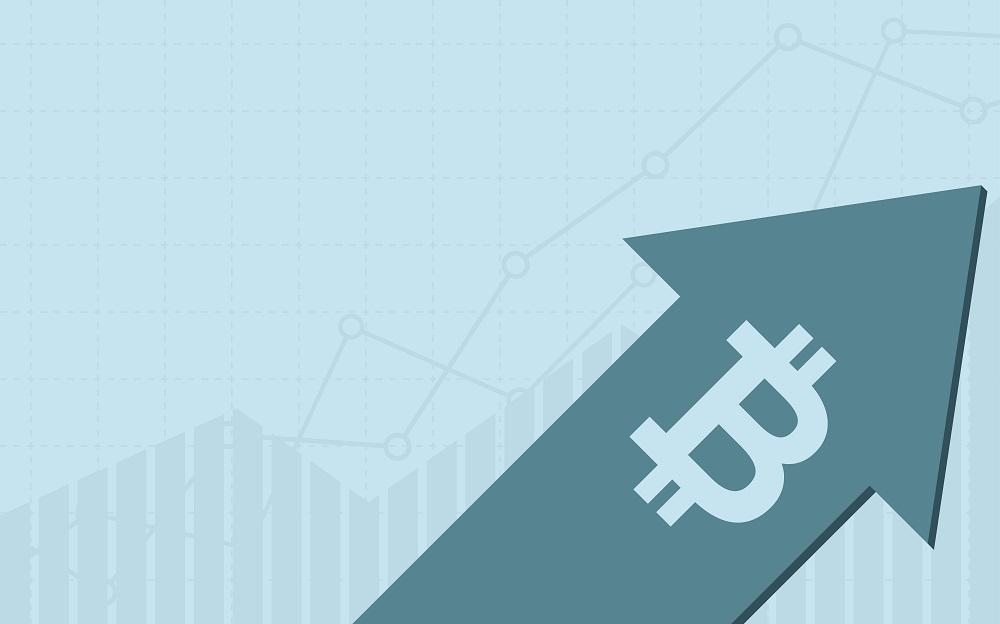 TheMerkle Bitcoin Price 3500
