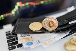 TheMerkle Cerber Ransomware Bitcoin Wallets