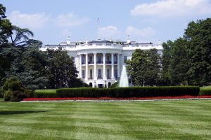 The Merkle White House Silicon Valley Novel Coronavirus