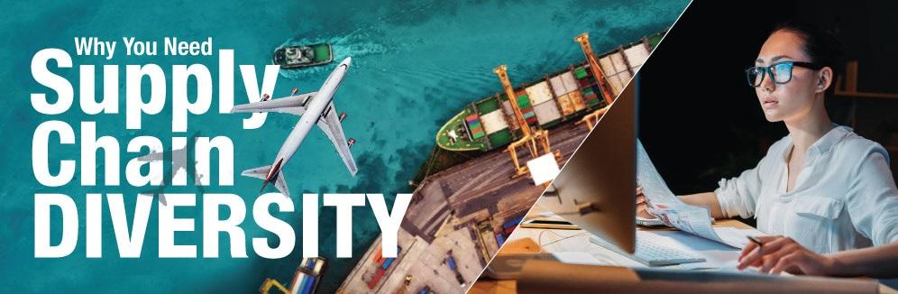 supply chain diversity