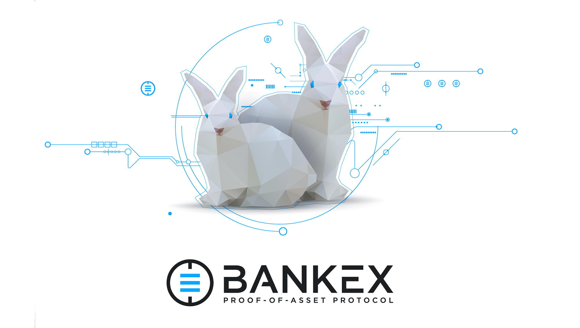 bankex rabbits themerkle