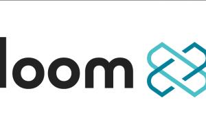 TheMerkle Loom Network