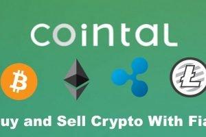 cointal logo