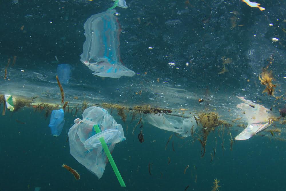 TheMerkle Ocean Pollution Seabin