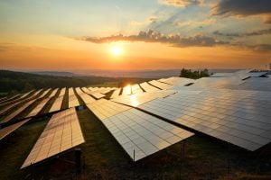 TheMerkle Collie Bitcoin mining Solar Power