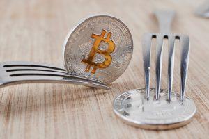 TheMerkle Bitcoin Cash Bitmain