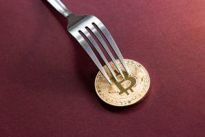 TheMerkle Bitcoin Prime Fork