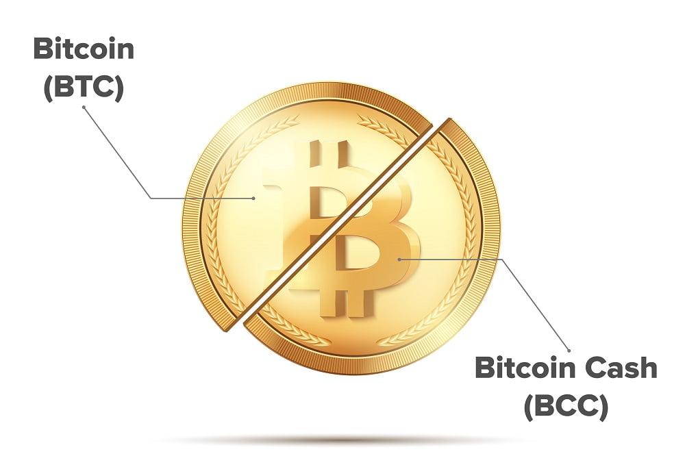 TheMerkle Bitcoin Cash Price Dip