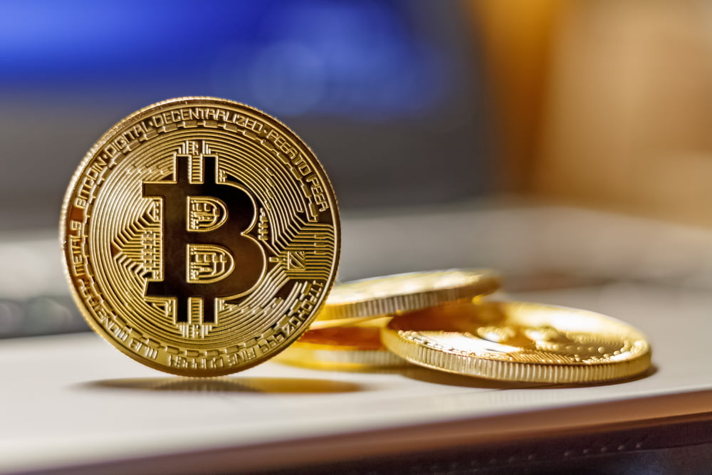 TheMerkle Y'alls Bitcoin Lightning Network