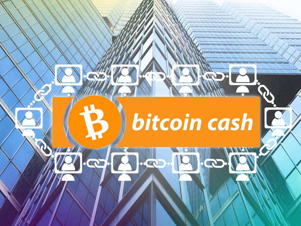 TheMerkle Bitcoin Cash Price 3000