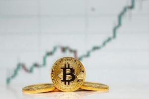 TheMerkle Bitcoin Survey part @