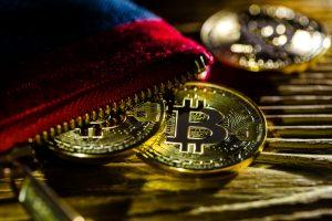 TheMerkle FreeWallet Bitcoin Gold