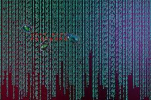 TheMerkle Electrum Wallet Vulnerability
