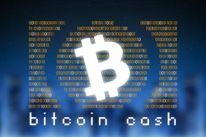TheMerkle Calvin Ayre Bitcoin Cash 10k